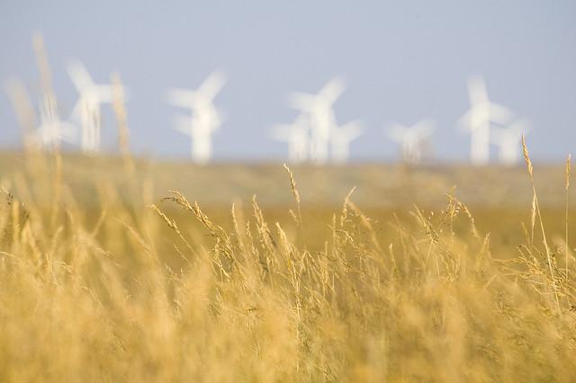 Quel est l'impact sur les réseaux de chaleur de la loi sur la transition énergétique ?