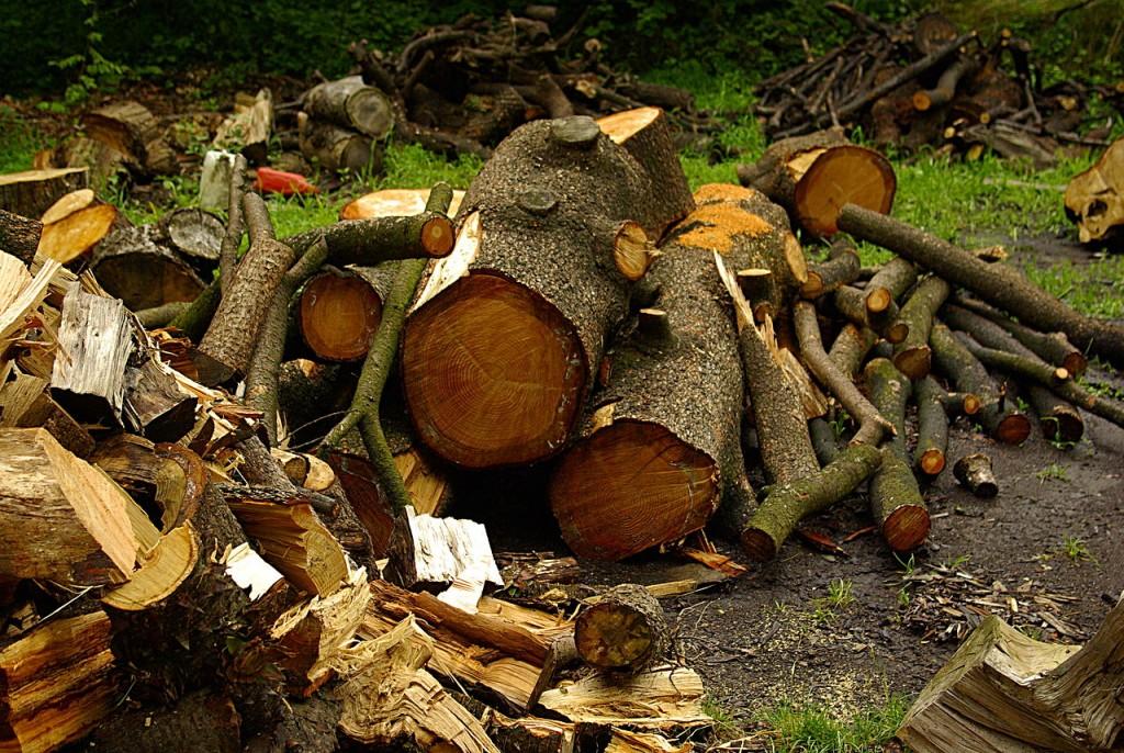 Biomasse approvisionnement difficile