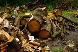 Biomasse : approvisionnement difficile