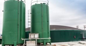 Royaume-Uni : la biomasse plus intéressante que la cogénération ?