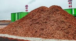 Douze enseignes s'intéressent à un projet de cogénération biomasse en Grèce
