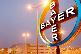 Bayer se félicite de la parfaite adéquation de la cogénération avec ses opérations chimiques