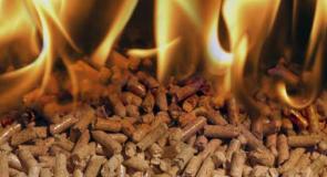 Meridiam investit 100 millions d'euros dans la biomasse