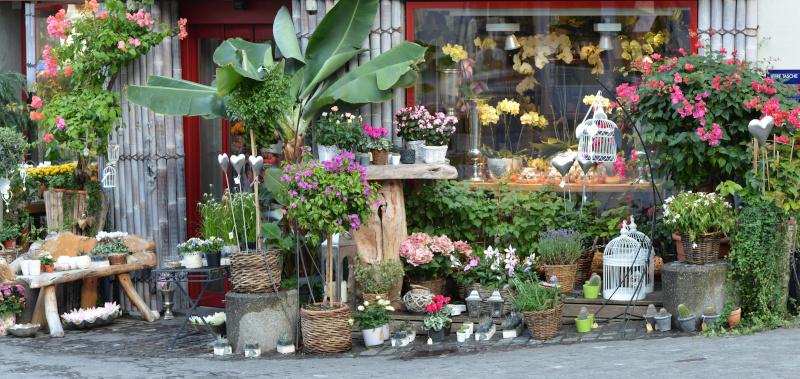 Fleuriste - quelle chambre froide pour votre profession?