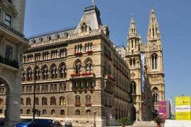 Vienne ne veut autoriser les chaudières que dans 20 % des nouvelles habitations