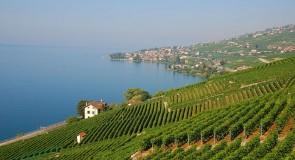 Bourg-en-Lavaux se chauffera à partir de l'énergie du soleil et du lac