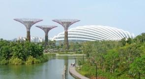 Le plan de Singapour pour rafraîchir sa ville du futur